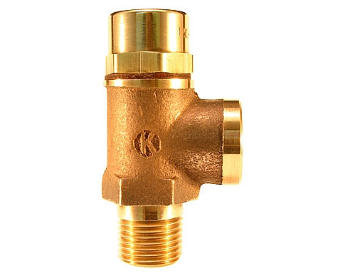"Kingston Valves 120E-4-030 1/2"" Ethyl. Pro. Disc Non-code Side Relief Valve, Special Disc/Brass Seat, 30 PSI at Sears.com"