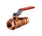 "Legend Valve 101-145 1"" P-200 FIP x Press Ball Valve"